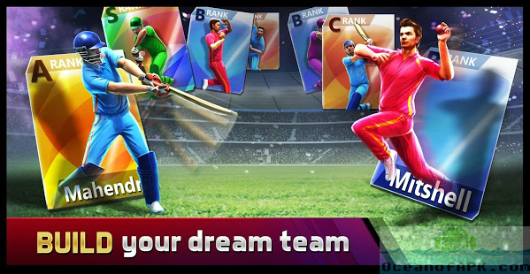 Smash Cricket Features