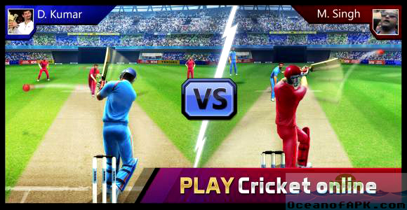 Smash Cricket Setup Free Download