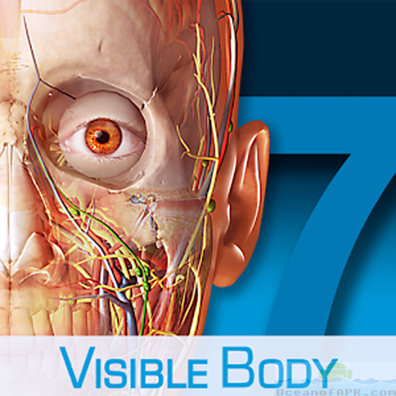 Visible body human anatomy atlas free download.