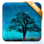 Dream Night Pro Live Wallpaper APK Free Download