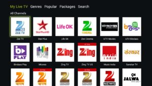 Download Live NetTV - Watch Live TV Channels v4.5.1 APK Free