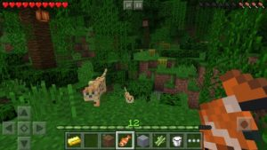 Download Minecraft v1.7.0.5 APK Free