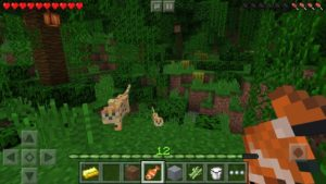 Free Minecraft v1.8.0.10 APK Download