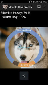 Free Identify Dog Breeds Pro v10 APK Download