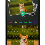ABC Keyboard – TouchPal v7.0.6.0 [Premium] APK Free Download