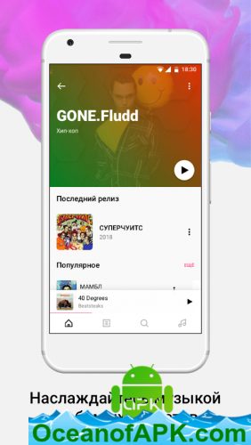BOOM: VK music player v4 2 4436 [Premium] APK Free Download