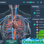 Visible Body 3D Anatomy Atlas Final APK Free Download