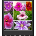 PhotoGrid: Video & Pic Collage Maker v7.09 build 70900004 [Premium] APK Free Download