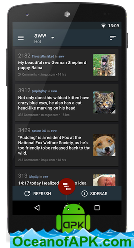 Relay-for-reddit-Pro-v9.5.93-build-402-Paid-APK-Free-Download-3-OceanofAPK.com_.png