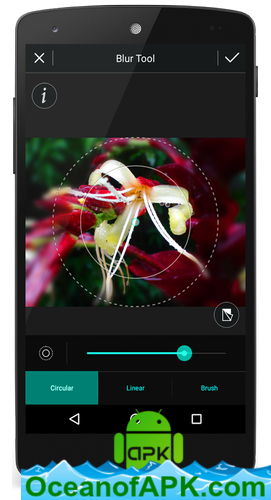 photo editor app download for mobile apk