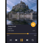 Pulsar Music Player Pro v1.9.1 build 160 [Patched] APK Free Download