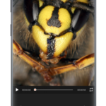GIF Maker – Video to GIF, GIF Editor v1.2.4 [Unlocked] APK Free Download