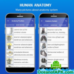 Gray's Atlas of Anatomy Pro (No Ads) v1.0 APK Free Download