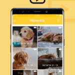 Alfred Home Security Camera, Baby&Pet v4.4.4 (build 2164) [Premium] APK Free Download
