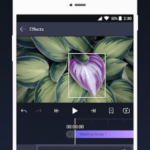 Alight Motion — Video and Animation Editor v2.8.0 [Unlocked] APK Free Download