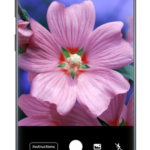 PlantSnap – Identify Plants, Flowers, Trees v3.00.20 [Pro] [Mod] [SAP] APK Free Download