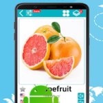 English 30000 Words with Pictures v20.1 [PRO] APK Free Download