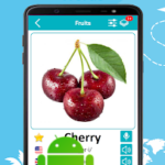 English 5000 Words with Pictures v20.6 [PRO] APK Free Download