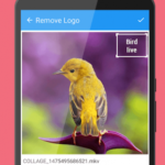 Remove Logo From Video v23.0 [AdFree] APK Free Download