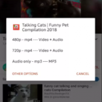 YouTube Video Downloader v5.0.1 [AdFree] APK Free Download