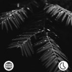MNML LIGHT – Adaptive Icon Pack v0.1 [Patched] APK Free Download