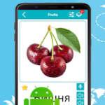 Russian 5000 Words with Pictures v20.06 [PRO] APK Free Download