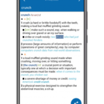 Concise Oxford American Dictionary & Thesaurus 11.4.593 [Premium][SAP] APK Free Download