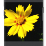 Cameringo+ Effects Camera v2.8.40 [Paid] APK Free Download