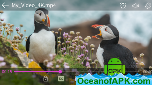 Video-player-unlimited-and-pro-version-v5.2.0-Paid-APK-Free-Download-1-OceanofAPK.com_.png