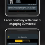 Anatomy by Muscle & Motion v2.1.72 [Subscribed] APK Free Download