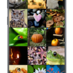 F-Stop Gallery v5.3.16 [Pro] [Mod Extra] APK Free Download