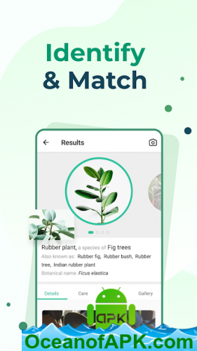 PictureThis-Identify-Plant-Flower-Weed-and-More-v2.9.1-Gold-APK-Free-Download-1-OceanofAPK.com_.png