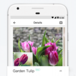 PictureThis: Identify Plant, Flower, Weed and More v3.0 [Gold] APK Free Download