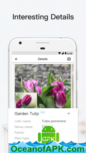 PictureThis-Identify-Plant-Flower-Weed-and-More-v3.0-Gold-APK-Free-Download-1-OceanofAPK.com_.png