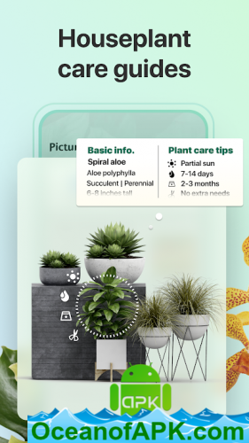 PictureThis-Identify-Plant-Flower-Weed-and-More-v3.0.4-Premium-APK-Free-Download-1-OceanofAPK.com_.png